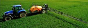 Fertilisation d'une plantation agricole au phosphore