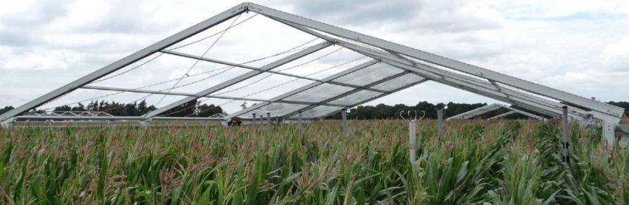 Tente de stockage agricole