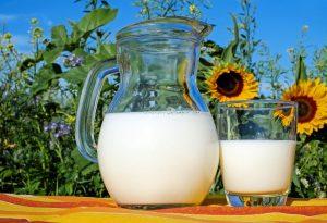Du lait et des tournesols